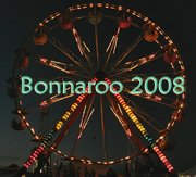 Ferris wheel at Bonnaroo 2008.